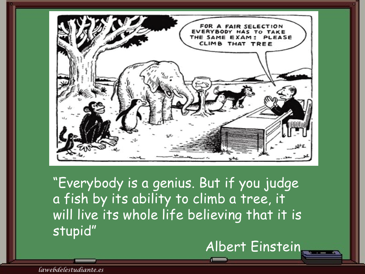 Einstein quotes tree fish climb albert tree by a climb ability if its to fish you