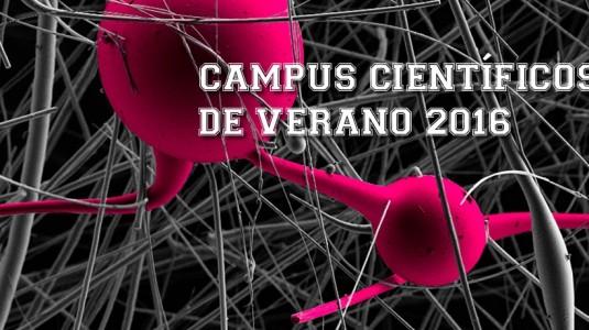 campus960